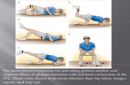Buttock muscle exercises